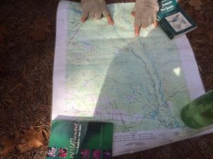 Navigating the Batsto John Volpa, a guide with Pinelands Adventures in Shamong, shows kayakers the 6-mile route they will take south on the Batsto River on Saturday Oct. 31, 2015.
