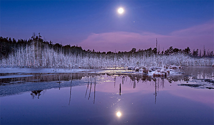 Moonrise on the Mullica River at Goshen Pond in the new jersey pine barrens.