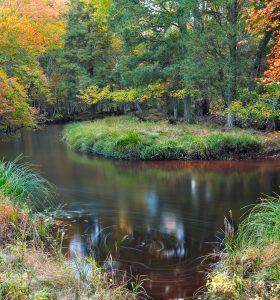 Pine Barrens Canoeing, Kayaking and Hiking, Canoe Rentals| Pinelands