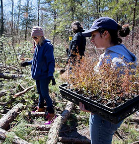 protect the new jersey pinelands
